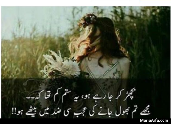 Amazing Poetry- Poetry Sad- Sad Love Poetry in Urdu-full sad poetry