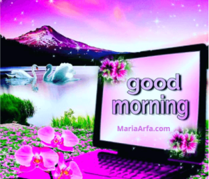 GOOD MORNING IMAGES WALLPAPER PHOTO PICTURES DOWNLOAD FOR WHATSAPP