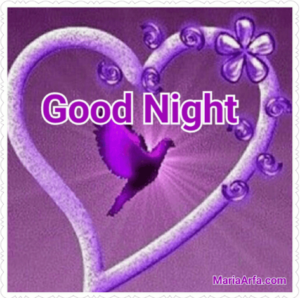 GOOD NIGHT LOVE IMAGES PICTURES PHOTO DOWNLOAD FOR FACEBOOK & WHATSAPP