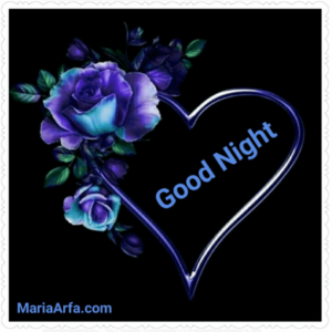 GOOD NIGHT LOVE IMAGES WALLPAPER PICTURES DOWNLOAD FOR WHATSAPP