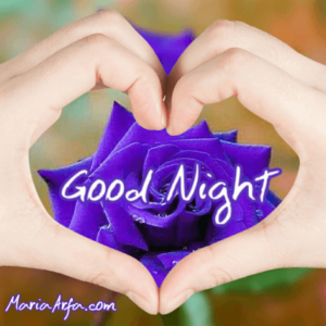 GOOD NIGHT IMAGES WALLPAPER PICS PHOTO PICTURES LATEST DOWNLOAD