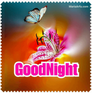 GOOD NIGHT LOVE IMAGES WALLPAPER PICTURES PHOTO DOWNLOAD