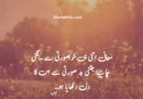 Best urdu quotes-Urdu quotes for life-Amazing Urdu Quotes