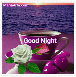 GOOD NIGHT LOVE IMAGES WALLPAPER PICTURES PHOTO PICS FREE NEW HD DOWNLOAD