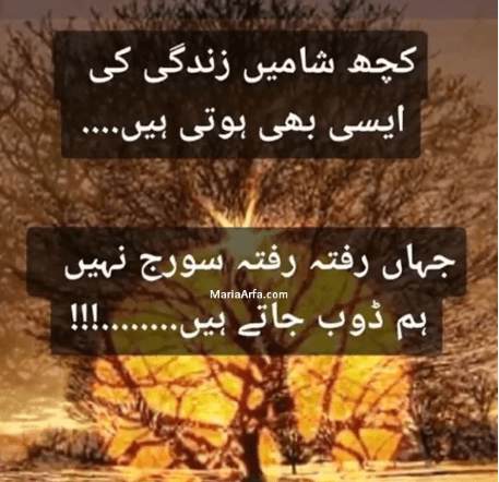 Urdu Poetry-Amazing Poetry-Hindi Shayari-Love Shayari