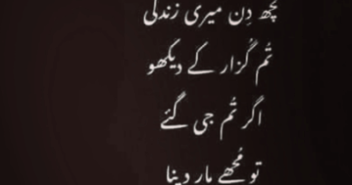 Poetry pic-Amazing Poetry-Latest Poetry-Modern Poetry