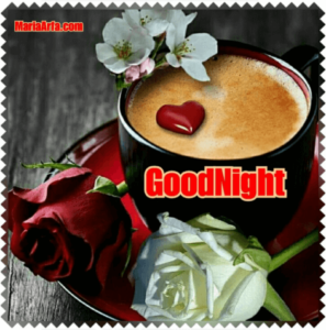 GOOD NIGHT LOVE IMAGES WALLPAPER PICTURES PICS FREE LATEST DOWNLOAD