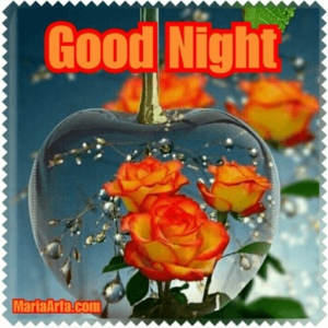 GOOD NIGHT LOVE IMAGES PHOTO FREE DOWNLOAD FOR FACEBOOK & WHATSAPP