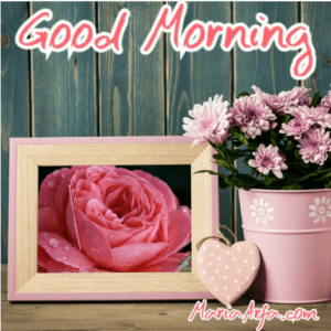 GOOD MORNING IMAGES WALLPAPER PICS HD DOWNLOAD SHARE WITH ROMANTIC LOVER FREE NEW