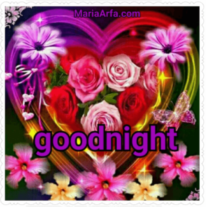 GOOD NIGHT LOVE IMAGES DOWNLOAD FOR WHATSAPP & FACEBOOK FRIEND