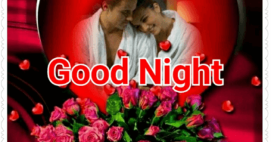 50+Good Night Images-Good Night Love Images free Download