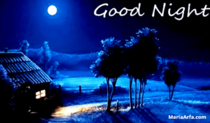 GOOD NIGHT IMAGES WALLPAPER PHOTO FREE HD PICTURES DOWNLOAD