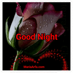 GOOD NIGHT LOVE IMAGES PHOTO PICS LATEST NEW FREE DOWNLOAD IN HD