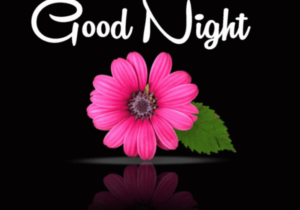 GOOD NIGHT IMAGES PHOTO WALLPAPER DOWNLOAD