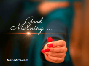 GOOD MORNING IMAGES FREE HD DOWNLOAD & SHARE WITH FRIEND