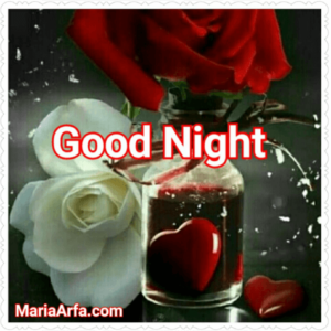 GOOD NIGHT LOVE IMAGES PHOTO PICS HD LATETS FREE DOWNLOAD
