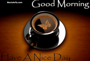 GOOD MORNING IMAGES PICS PHOTO HD DOWNLOAD FOR FACEBOOK