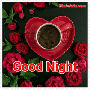 GOOD NIGHT LOVE IMAGES WALLPAPER PICTURES FREE DOWNLOAD