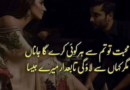 Love Romantic Poetry-Love Poetry-Shayari Urdu Love-Poetry on Love