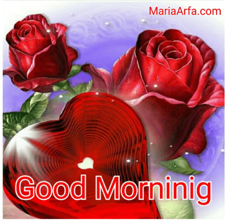 60+Good Morning Images Free Download-Good Morning Photos HD