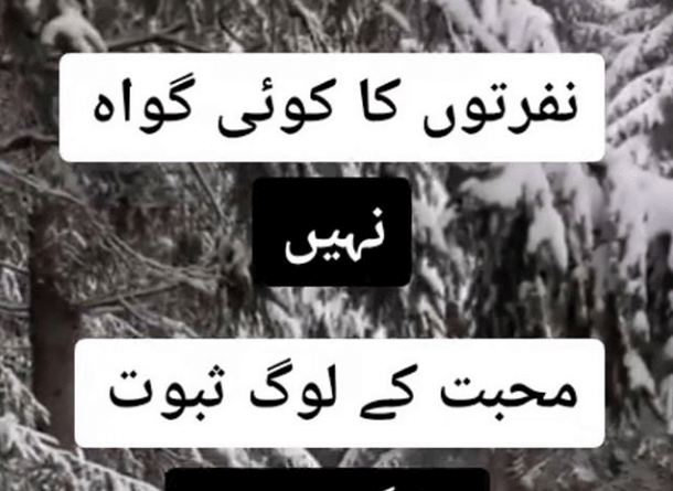 Best Urdu Poetry in the World-Short Poetry in Urdu-Ashar in Urdu