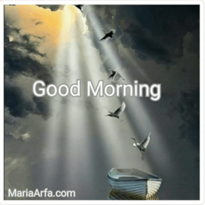 GOOD MORNING IMAGE FREE DOWNLOAD WALLPAPER PICS PHOTO FOR FACEBOOK