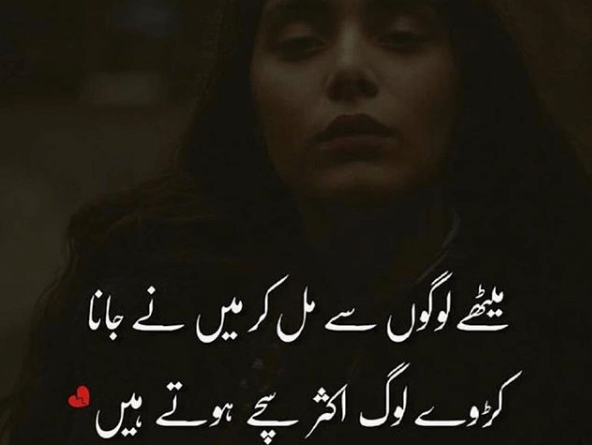 Amazing Poetry-Best Poetry Ever-New Poetry in Urdu-Ashar in Urdu
