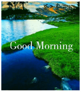 GOOD MORNING IMAGE FREE DOWNLOAD WALLPAPER PICTURES PICS FOR WHATSAPP