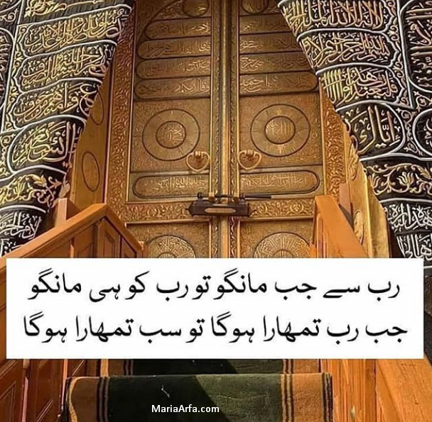 Urdu quotes on zindagi-Aqwal zareen in urdu-Amazing quotes in urdu