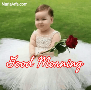 GOOD MORNING PHOTO DOWNLOAD 2020 IMAGES WALLPAPER PICS