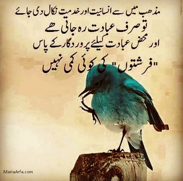 Islamic quotes-Quotes about Islam-Islamic quotes about life
