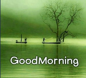 GOOD MORNING PHOTO DOWNLOAD 2020 IMAGES WALLPAPER PICTURES WHATSAPP