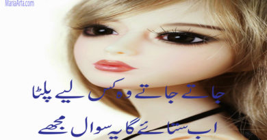 Poetry Urdu Sad-Sad Shayari in Urdu-Sad Poetry-Sad Poetry in Urdu