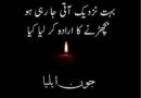 Muhabbat Poetry in Urdu-Poetry for gf in Urdu-Best friend poetry in urdu
